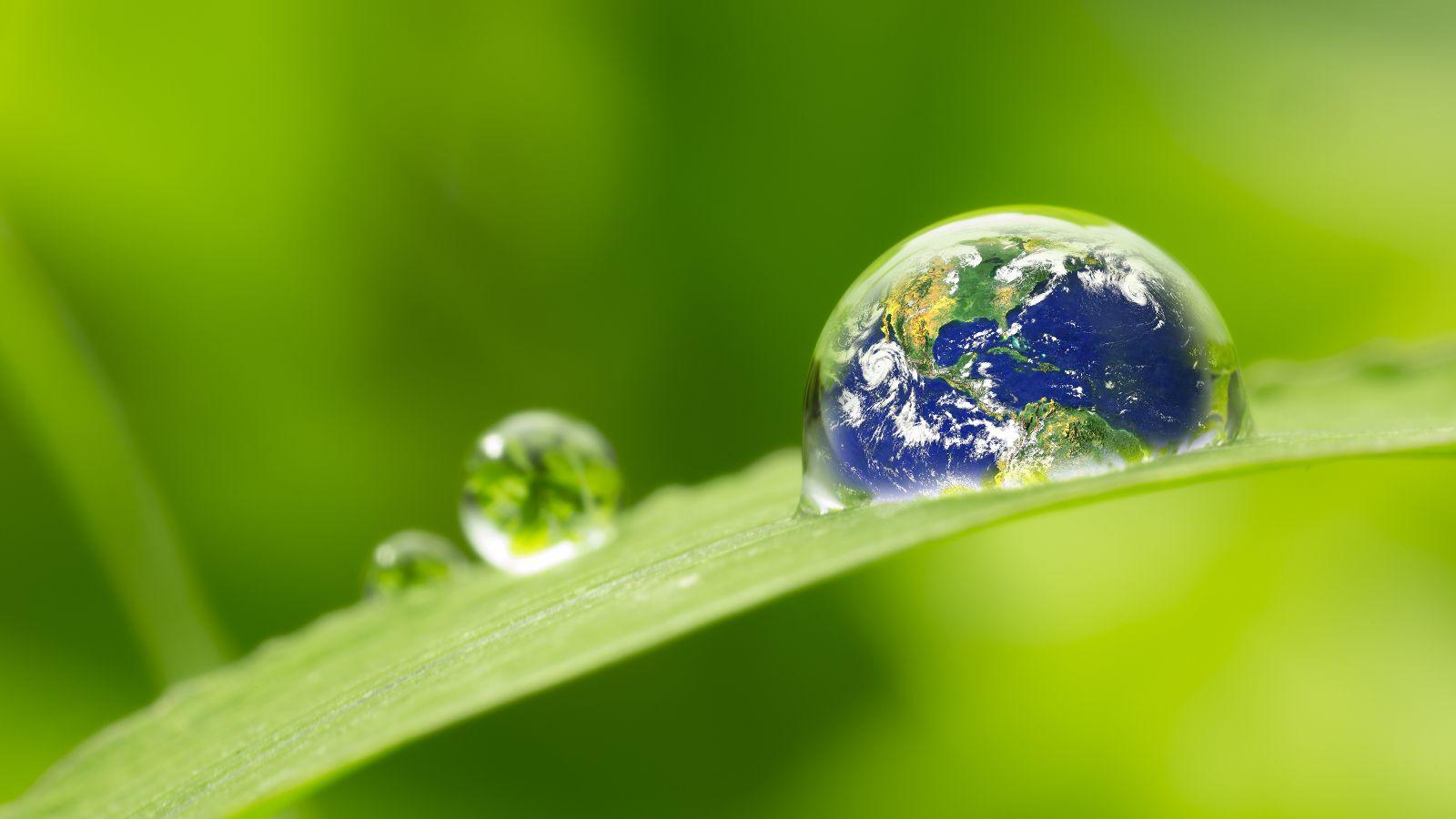 Das Bild ist eine Fotomontage: Auf einem Tropfen auf einem Grünen Blatt ist die Weltkugel zu sehen.