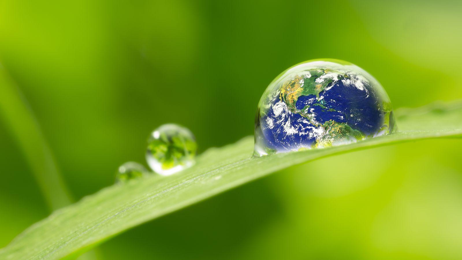 Das Bild ist eine Fotomontage. Zu sehen ist ein grünes Blatt mit einem Tropfen darauf. In dem Tropfen ist eine Weltkugel zu sehen.